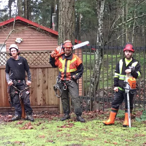 MJR Tree Service Victoria Duncan Nanaimo Courtney Campbell River