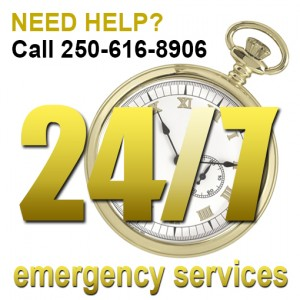 emergency-MJR-Tree-Service