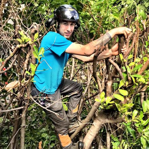 MJR Tree Service Duncan Staff