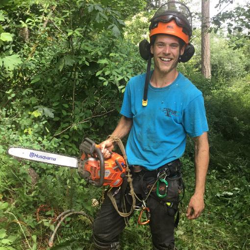 MJR-Tree Service Crew Member-Kirkland